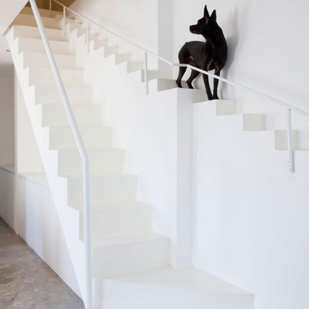 Creative Dog Staircase For Pets in a House in Vietnam