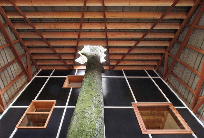 Interior Design - Small Eco House Architectural Design in Gent, Belgium