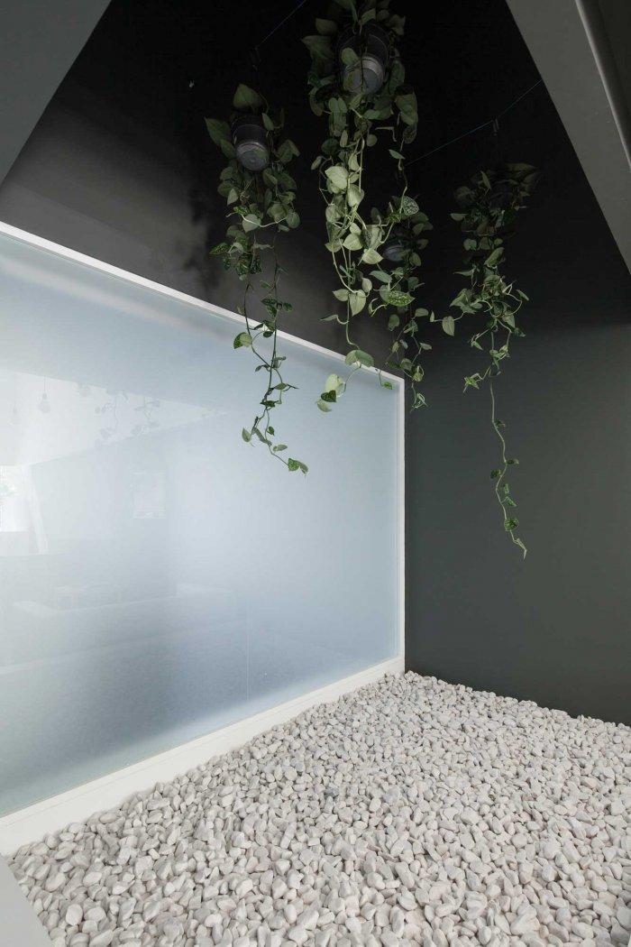 Interior Garden - Stylish and Modern Dental Studio Design in Portugal