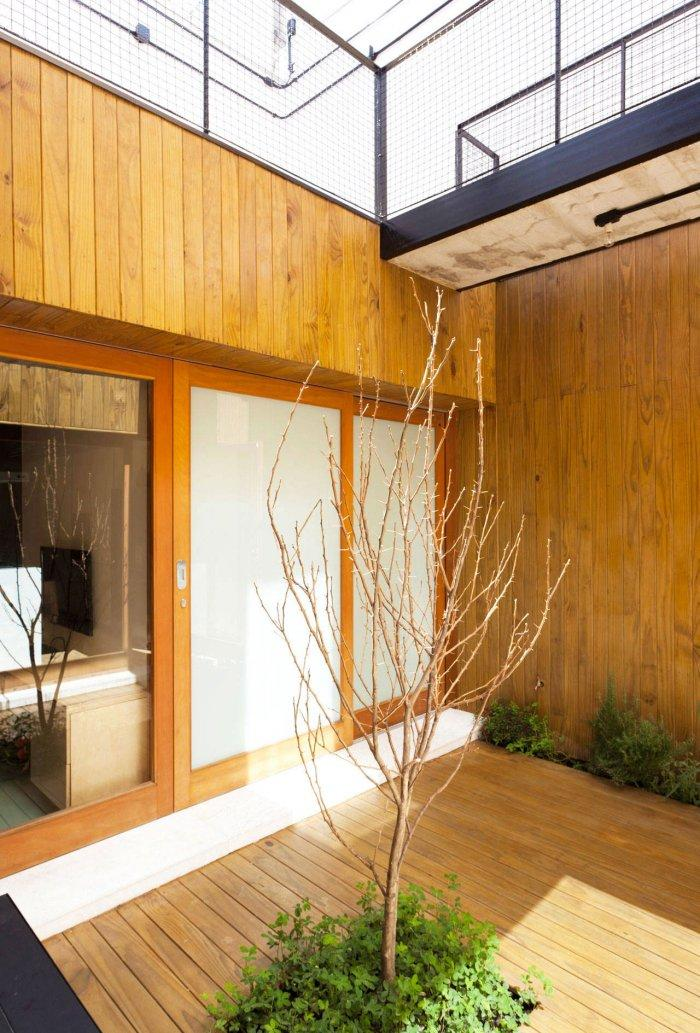 Tree Decor - Modern Breezy and Cozy Home in Sao Paolo, Brazil