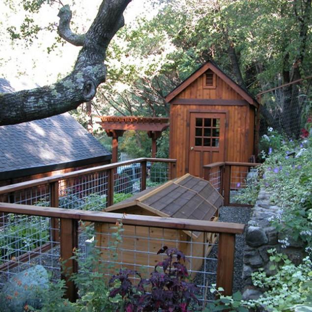 Dog Hut - The Contemporary Dog Hut as Part of the Garden Decor