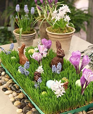 Wheat Grass Centerpiece - Easter Decorating Ideas in Pictures & How-To Examples