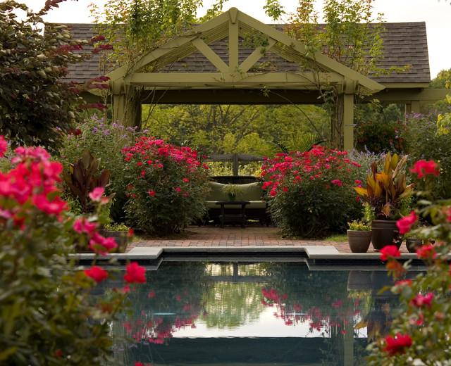 How to Decorate Beautiful Garden Roses Over an Outdoor Swimming Pool