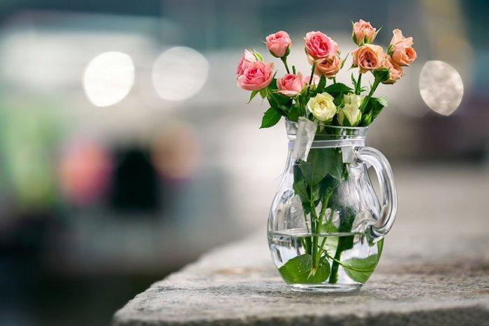 How to Decorate Your Garden with Beautiful Roses