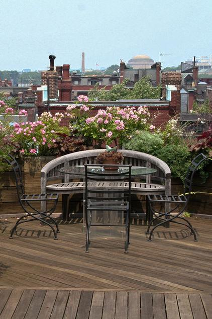 How to Make Urban Roof Balcony Decoration with Pink Roses