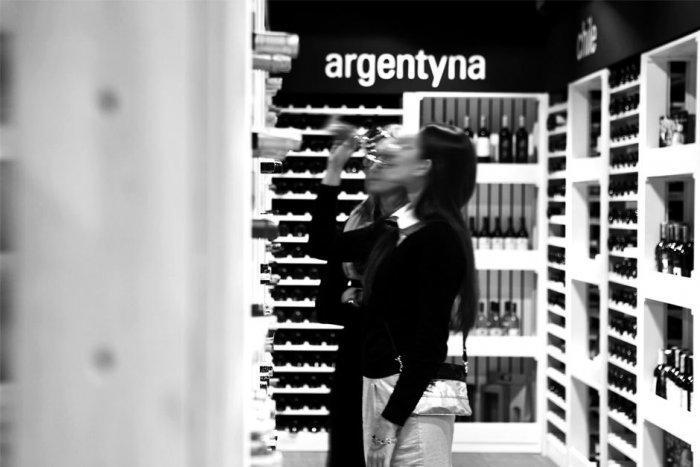 Cozy Wine Degustating Area Design and Architecture