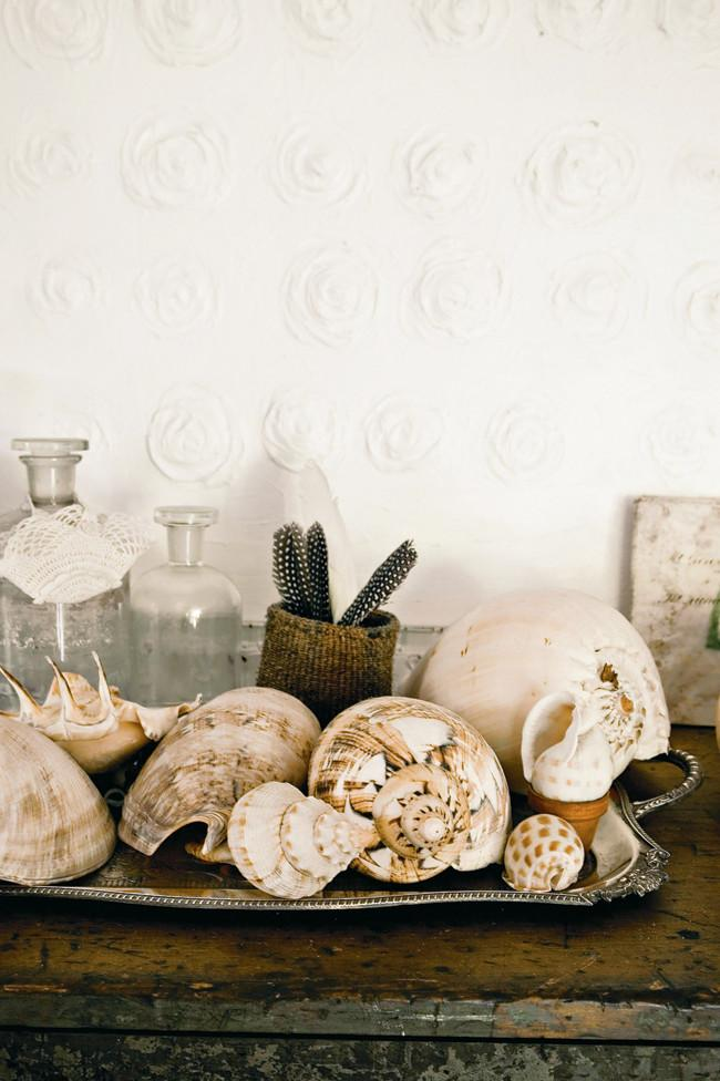 Sea rapana shells on a tray - Amazing Home Decorating Style Trends and Ideas
