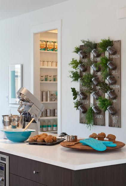 Small glass jars for spices hanging on the wall - Low-Budget Ideas and Ways To Bring the Summer into your Kitchen