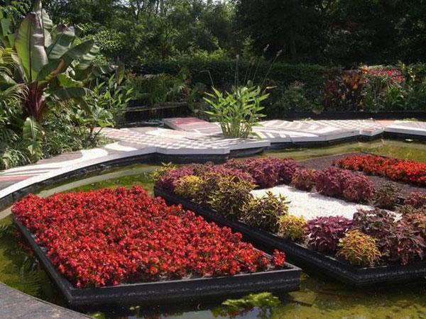Colorful flowers - Contemporary Garden Design Ideas for Summer 2013