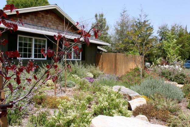 Garden made of native plants – 9 Design Ideas, Tips and Examples for 2013