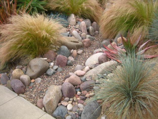 Garden ornamental grasses - 9 Design Ideas, Tips and Examples for 2013