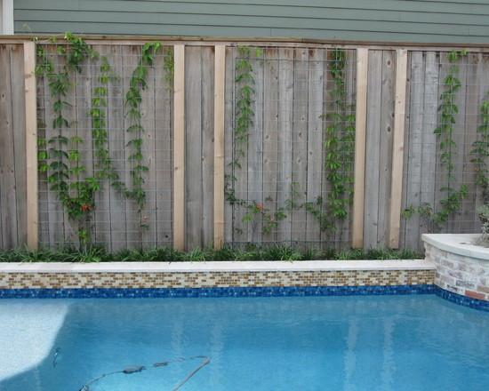 How to Place a Garden pool in a Small Yard