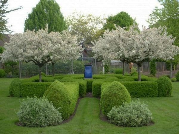 Shrubs design - Contemporary Garden Design Ideas for Summer 2013