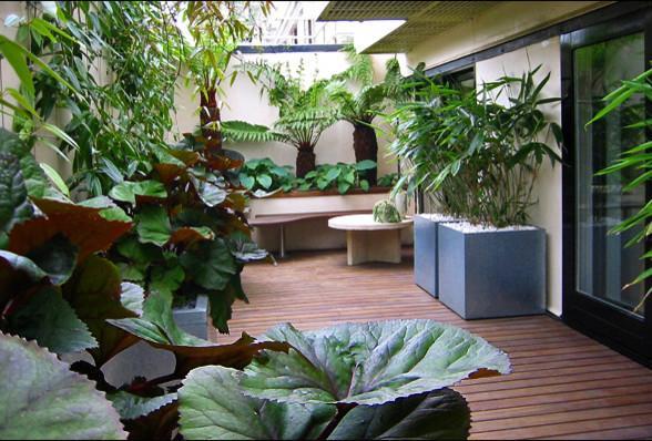 Garden wooden minimalist deck Ideas for Trendy Homes