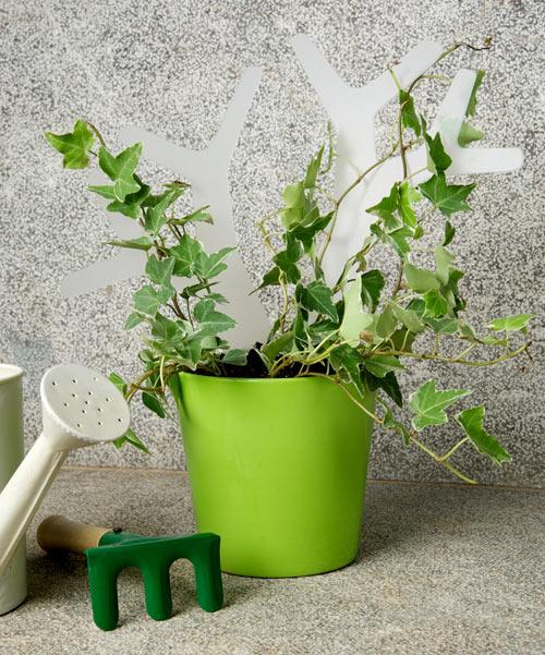 Green flower pot - Garden Kit with Tools for Easy Maintenance by Bubble Design