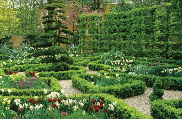 Hedge Fence Ideas, Tips and Examples