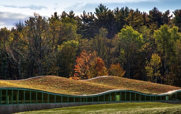 The Ingenious Hotchkiss Biomass Power Plant Design in USA