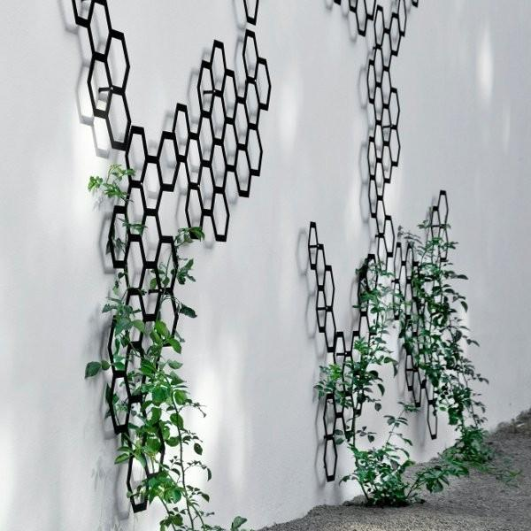 Metal Trellis - Contemporary Garden Furniture and Decoration Ideas