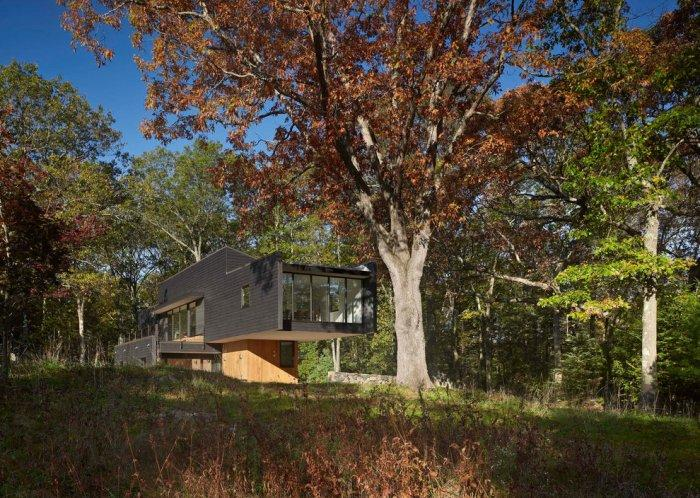 The eastern glass facade facing the forest - Weekend House by Chan-Li Lin