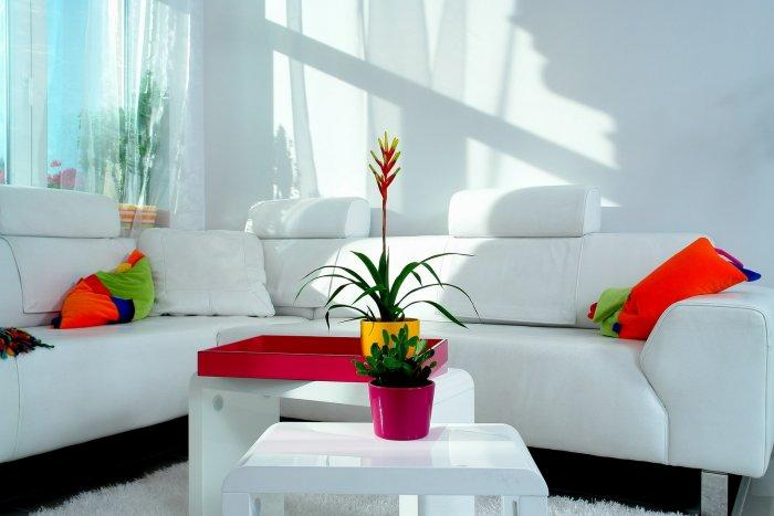 Cheerful Interior Design of an Apartment in Budapest
