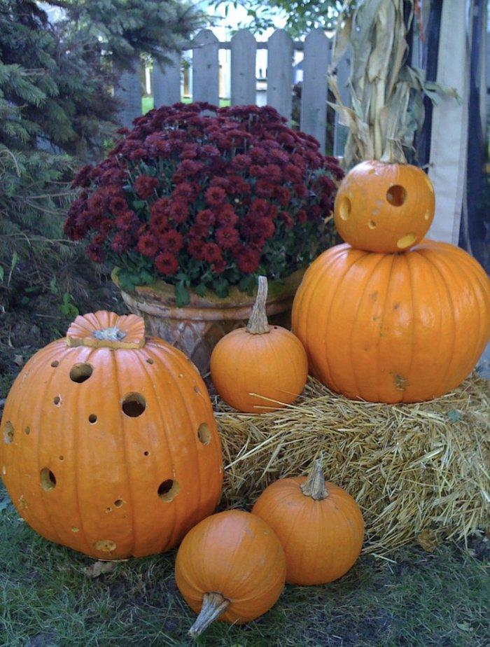Hollowed pumpkins used for Halloween garden decor - 36 Ideas for Your Home