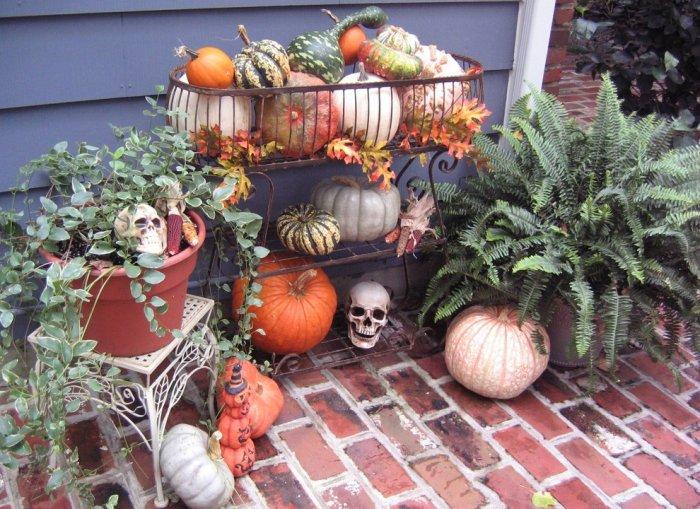 Skulls placed randomly among pumpkins - Spooky Halloween Ideas for Scary Interior Decorations