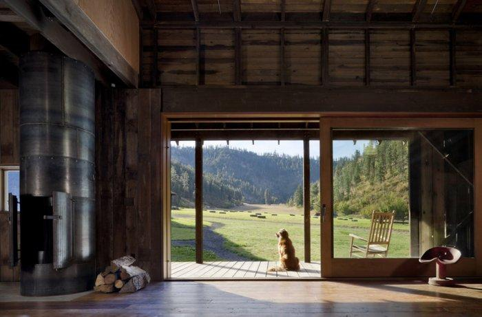 Golden Retriever standing at the front porch - How the Dogs fit in our Home Interior Design