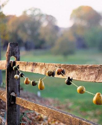 Gourd Garland - How to Decorate your Outdoor Areas for Halloween