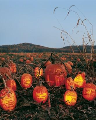 Gourds in the Graveyard - How to Decorate your Outdoor Areas for Halloween