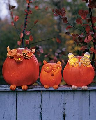 Owl Pumpkins - How to Decorate your Outdoor Areas for Halloween