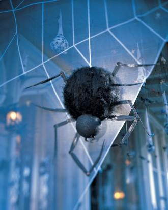 Spider Sentry - How to Decorate your Outdoor Areas for Halloween