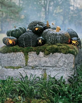 Spider Squash - How to Decorate your Outdoor Areas for Halloween
