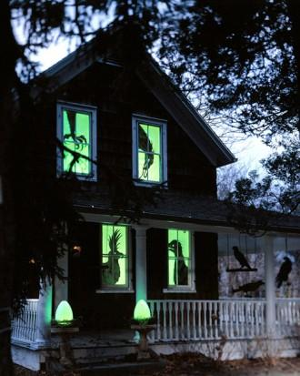 Spooky Birds in Windows - How to Decorate your Outdoor Areas for Halloween