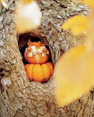 Wise Owl Pumpkin - How to Decorate your Outdoor Areas for Halloween