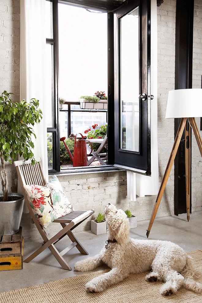 shaggy pooch dog in a small room - How the Dogs fit in our Home Interior Design