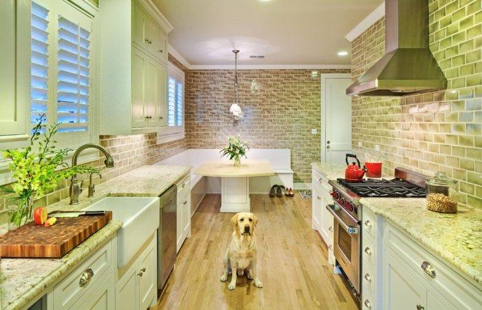 Yellow Labrador in modern kitchen- How the Dogs fit in our Home Interior Design