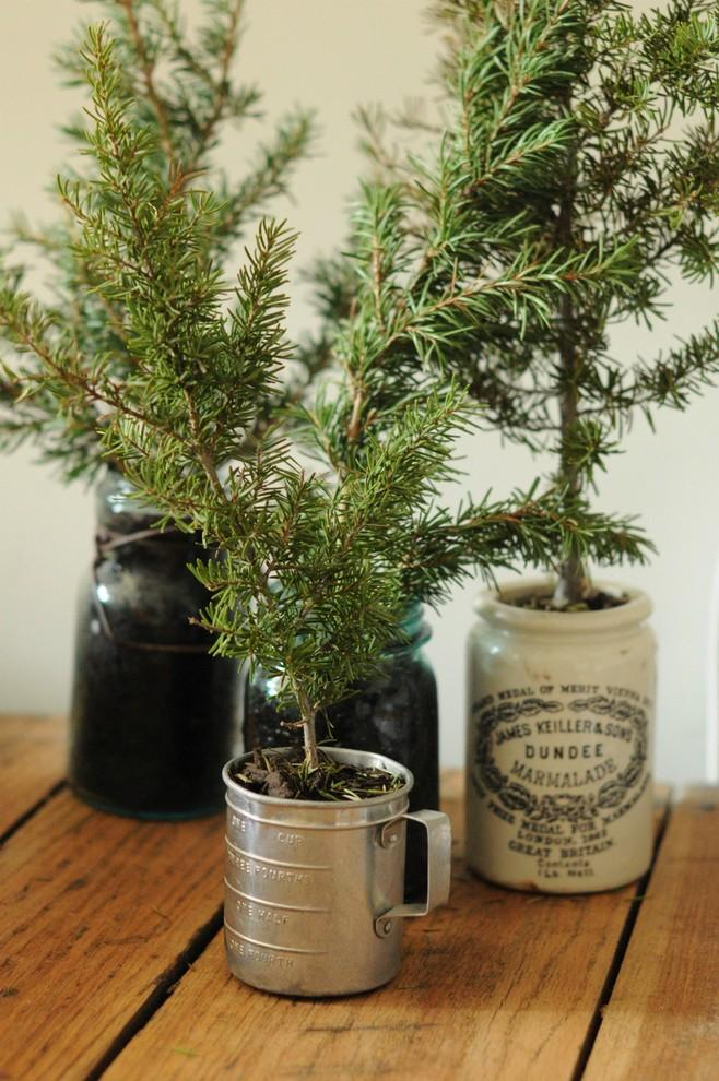 Christmas tree cuttings potted in vintage containers - 17 Scandinavian Examples of  Home Decorations