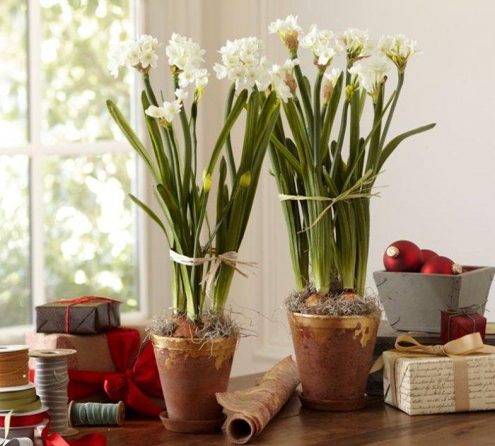 Lovely Christmas paperwhites - Decorating Ideas with Scandinavian Touch