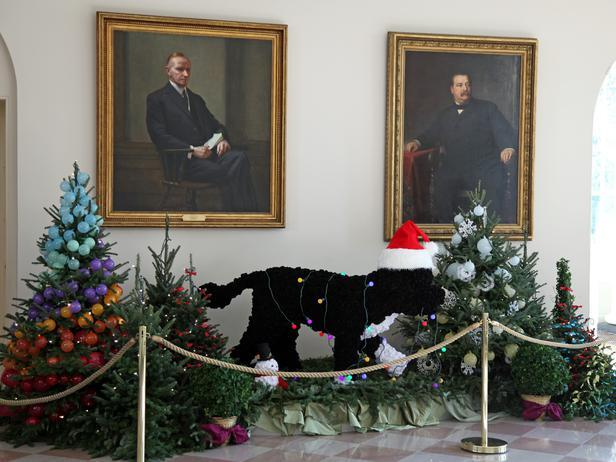 Two lovely Christmas trees decorate the East Room - Holiday Ideas from America's First Home