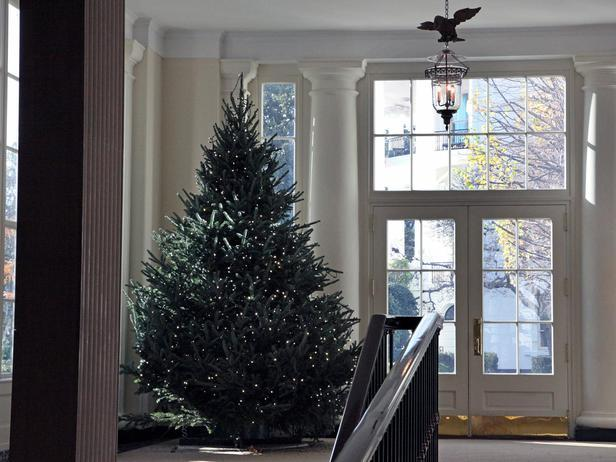 Decorative Christmas tree standing in front of a window - Holiday Ideas from America's First Home