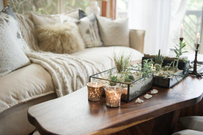 Pot plants decorating natural wooden-colored table - 10 Tips for Creating a Home Paradise in Urban Areas