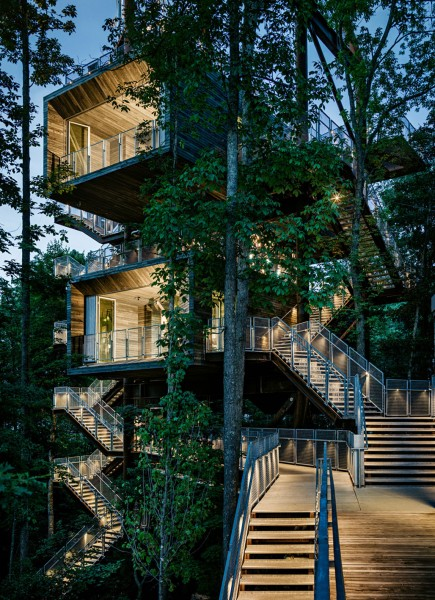 A view towards the two-storey building-Forest Treehouse Displaying Sustainable Architecture