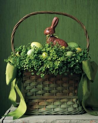 Easter bunny full with clovers and a chocolate bunny