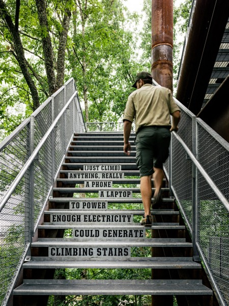 Metal staircase leading to the second floor-Forest Treehouse Displaying Sustainable Architecture