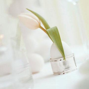 Small white tulip as an Easter table centerpiece