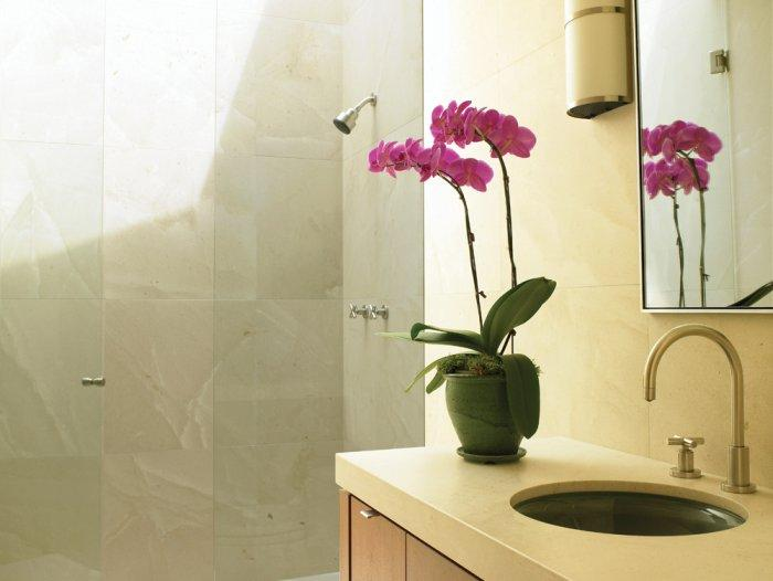 Bathroom decorating with pink Orchidaceaes and other details