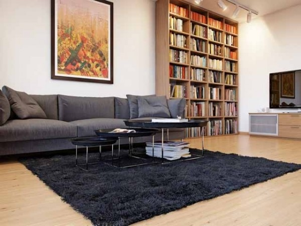 Contemporary grey sofa and black rug in a white living room-effective interior design solutions