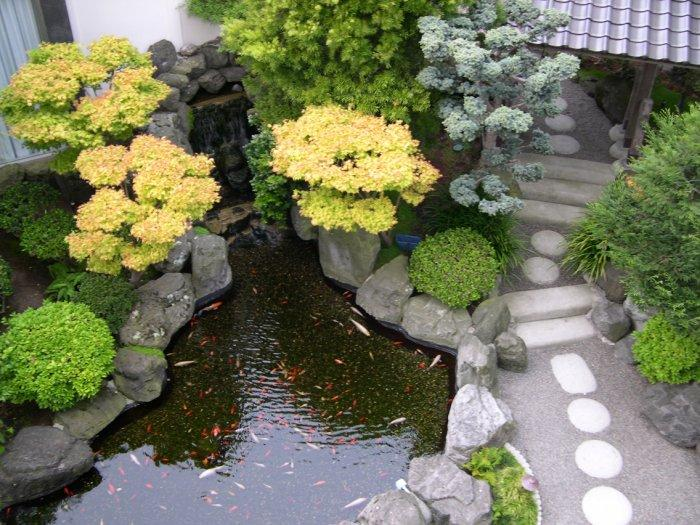 Feng Shui Backyard Pool : Feng Shui garden design with small pool and stone path