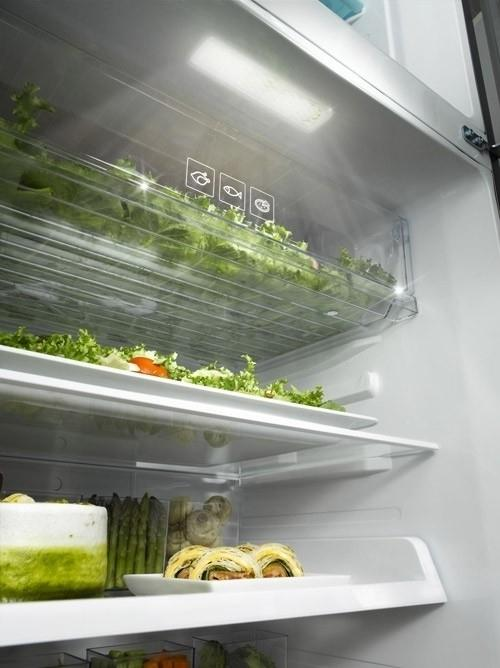 Samsung 3050 - the section where green food remain and preserve its quality