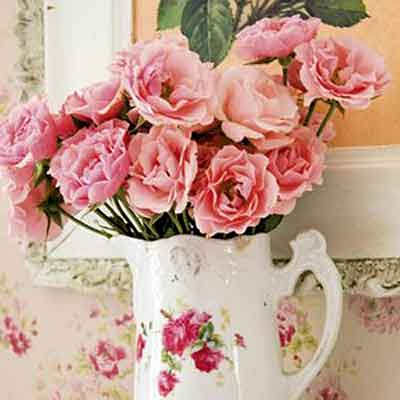 Pink roses inside a traditional porcelain white pitcher